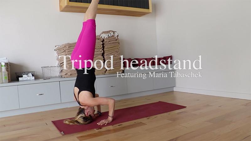 Tripod Headstand featuring Maria Tabaschek