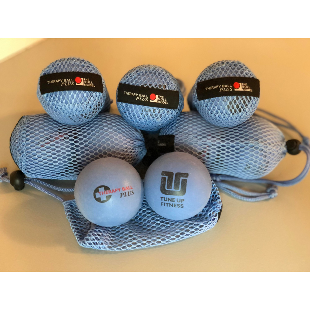 Yoga Therapy Ball Plus Pair in Tote